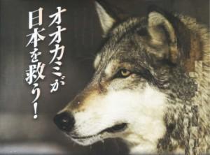 オオカミが日本を救う!